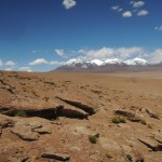 Desert with Snowy Mountains