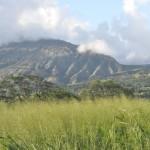 Slopes of Heleakala 1