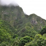 Iao Valley State Park 2