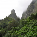 Iao Valley State Park 1