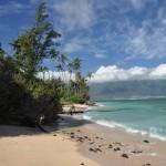 South Maui Beach 1