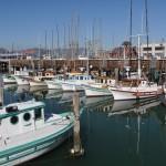 Fisherman Wharf 2