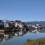 House Boats 1